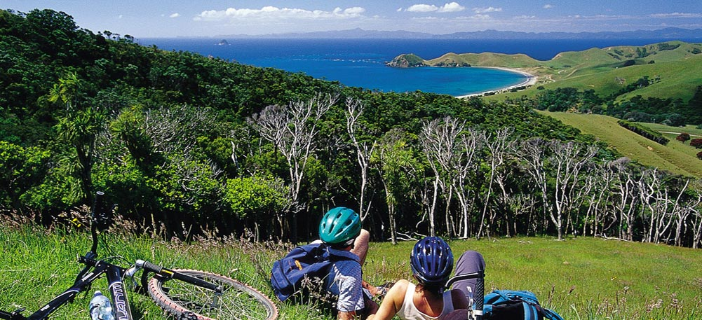4. Image Four
