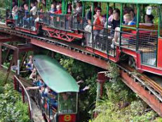 School Holiday Activites