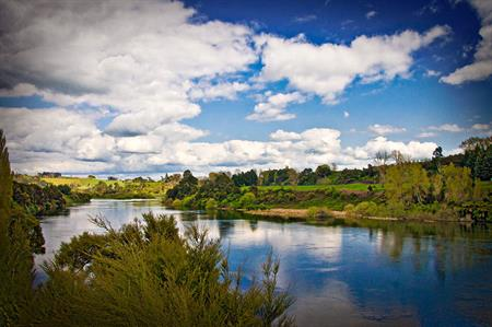Hamilton Gardens - Mystery Creek 1-way (Return by minibus)