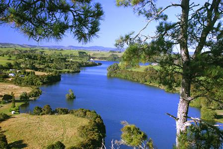 Cruise & Mystery Creek Wine Tasting 1-way (return by minibus)