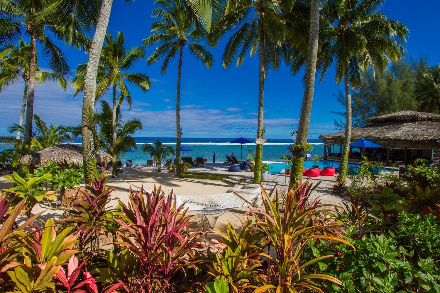 Save 20% Special