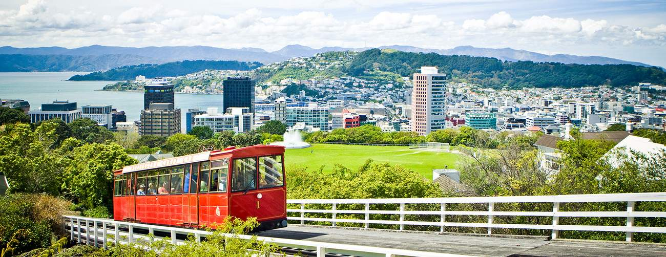 A-May-zing Wellington Sale