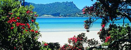 Long Weekend Deal - Whangarei