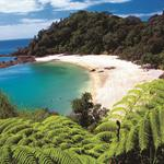 Weekend Deal Northland