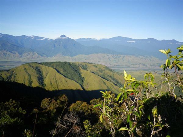 Shaggy Ridge Trek | PNG Trekking Adventures