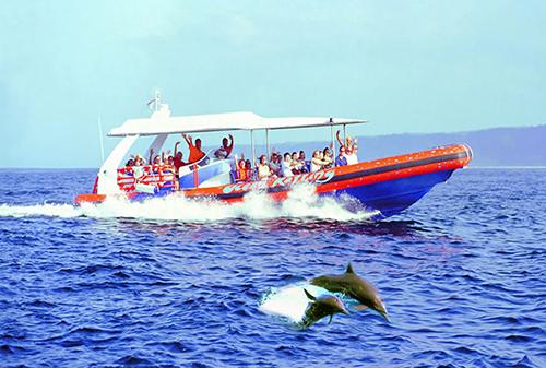 Bali Hai-Cruise