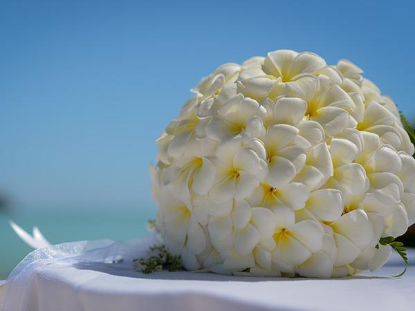 Round Plumeria Arrangement