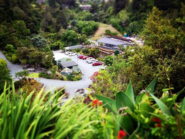 Whangarei Public Gardens Distinction Whangarei Hotel & Conference Centre