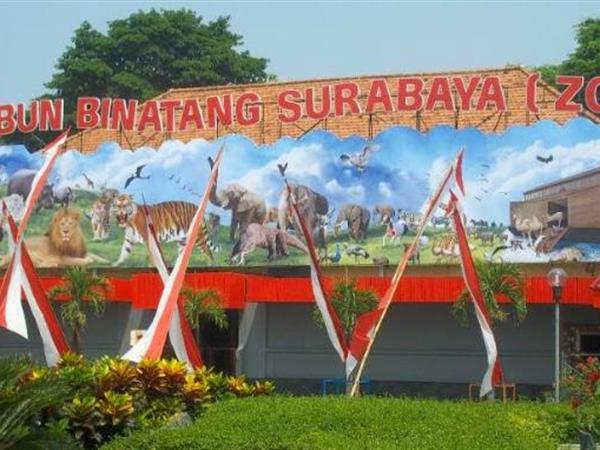 Surabaya's Zoo Zest Jemursari, Surabaya