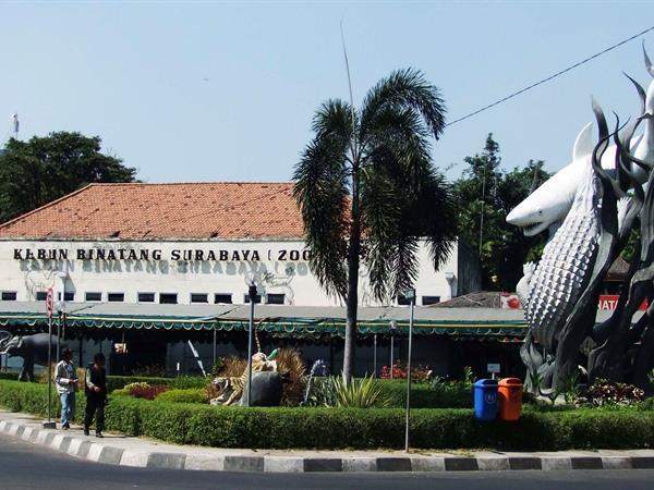 Kebun Binatang Surabaya Zest Jemursari, Surabaya
