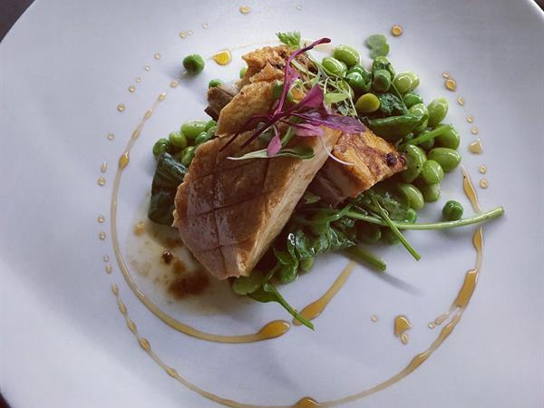Parcels Restaurant Distinction Dunedin Hotel