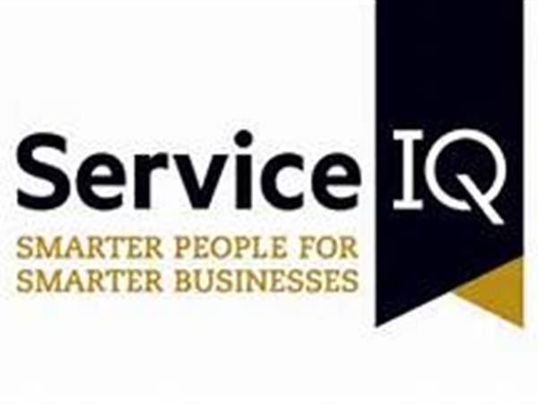 C&I Professional Consultant Award