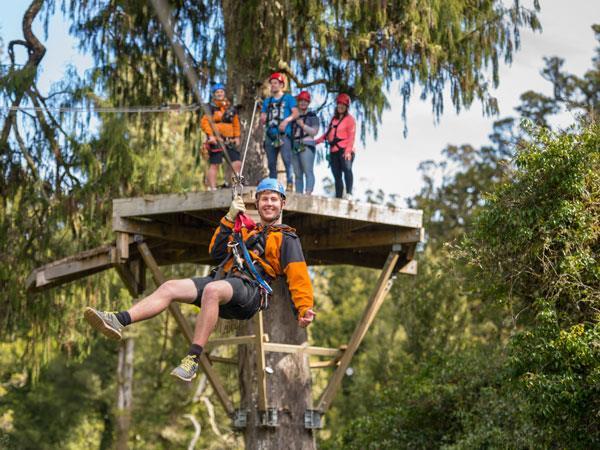 Rotorua Canopy Tours IUHPE c/o The Conference Company