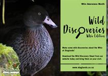 Wild Discoveries - Whio Edition Staglands Wildlife Reserve and Café