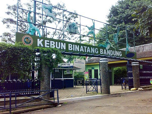 Bandung Zoo Zest Sukajadi Bandung