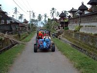 Quad / Buggy + White Water Rafting