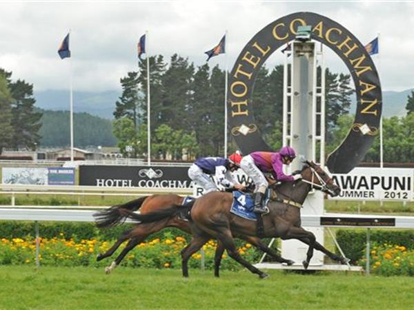 Awapuni Racecourse Distinction Coachman Hotel Palmerston North