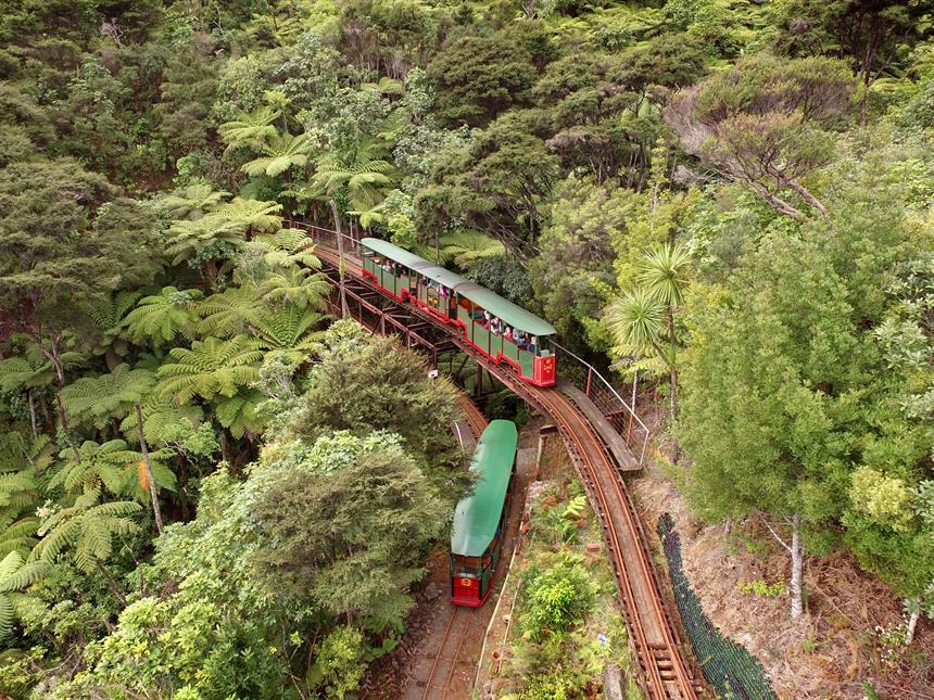 Driving Creek Railway Explorer Coromandel Adventures