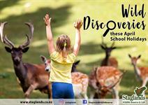 Wild Discoveries at Staglands these School Holidays! Staglands Wildlife Reserve and Café
