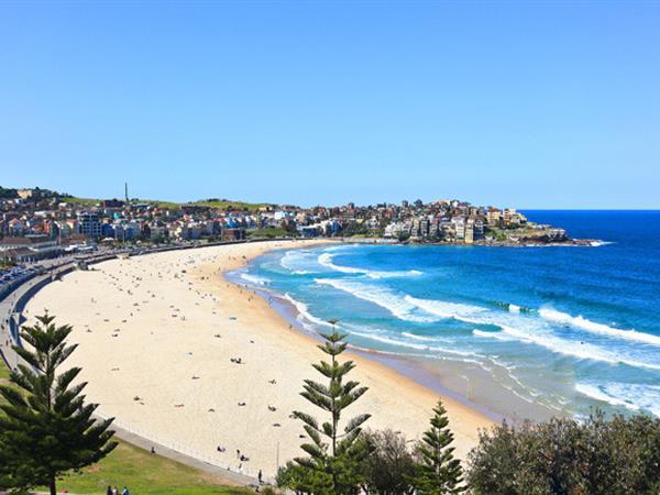 Bondi Beach The York Sydney by Swiss-Belhotel, Sydney CBD