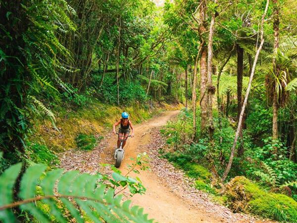 HeadsUp Adventures Whangarei Discovery Settlers Hotel Whangarei