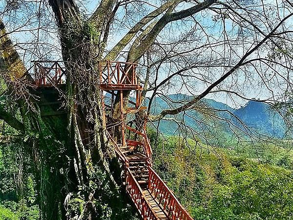 Ciherang Tree House and Waterfall