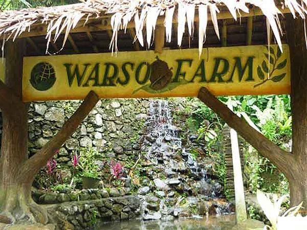 Warso Farm Bogor Zest Hotel Bogor