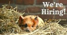 Job Vacancy: Park Ranger / Grounds Person - Part Time