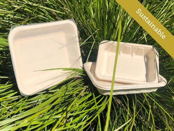 Bagasse Sugar Cane Fibre Trays Contour Packaging
