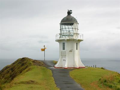 Northland Tour Happy NZ Tours