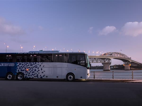 Leopard Coachlines Limited