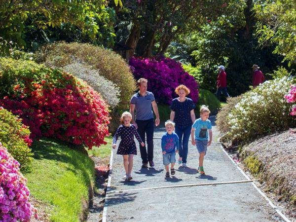 Pukeiti Forest & Rhododendron Gardens Distinction New Plymouth Hotel & Conference Centre