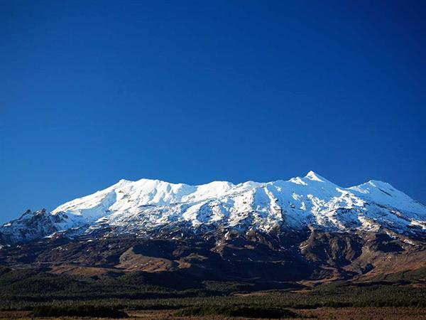 14 Day - Discover New Zealand Tour