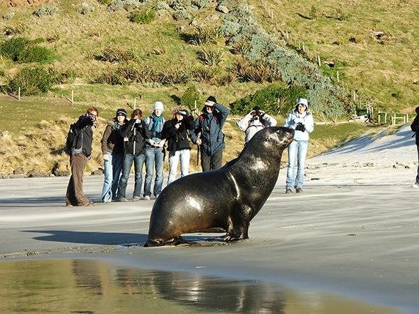 14 Day - Natural Habitat Tour