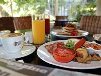 Bed & Breakfast For 1 - Rotorua