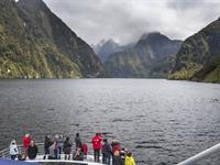 Fiordland Explorer