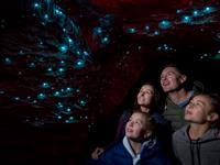 Glowworms & Hotel Combo: Te Anau