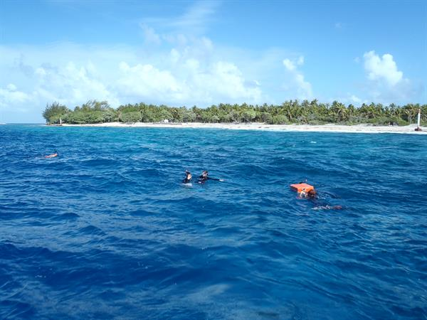 Drift Snorkeling in Tiputa Pass on Rangiroa