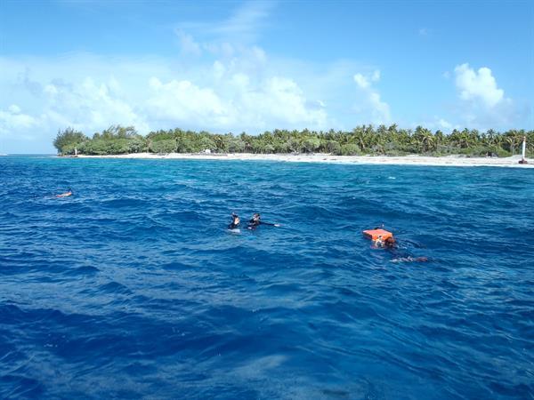 Drift Snorkeling in Tiputa Pass