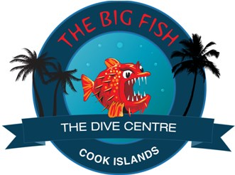 A Big Fish - The Dive Centre