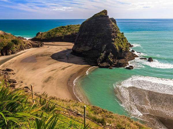 Bush and Beach Tour Swiss-Belsuites Victoria Park, Auckland, New Zealand