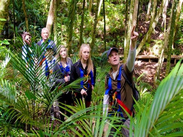 EcoZip Adventures, Waiheke Island Swiss-Belsuites Victoria Park, Auckland, New Zealand