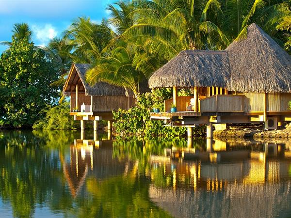Polynesian Deep Tissue Le Taha'a Island Resort & Spa