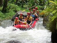 Rafting Bali Bahama Rafting/Cycling/Volkswagen driving