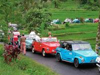 Rafting&VW Safari 2 in 1