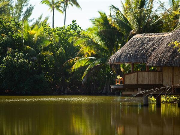 Hydrothérapie et Détente polynésienne Le Taha'a by Pearl Resorts