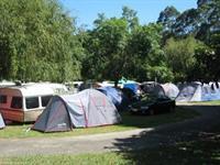 Powered Campsites Awakeri Hot Springs