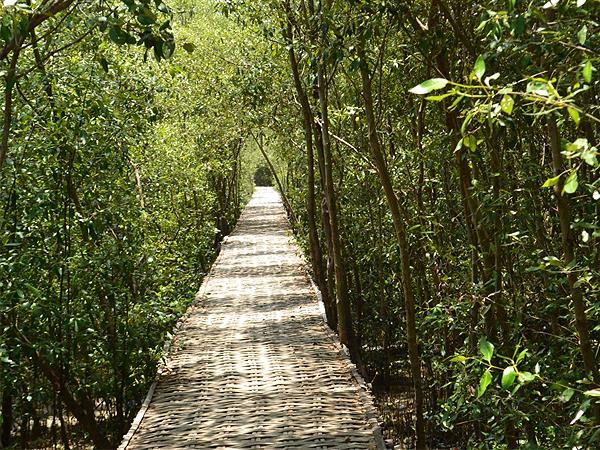 Ecotourism Mangrove Wonorejo Zest Jemursari, Surabaya