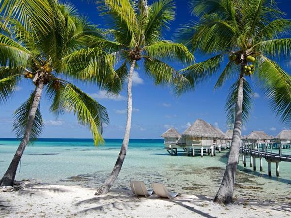 Stay 5 Save 40% with Breakfast Included Tikehau Pearl Beach Resort