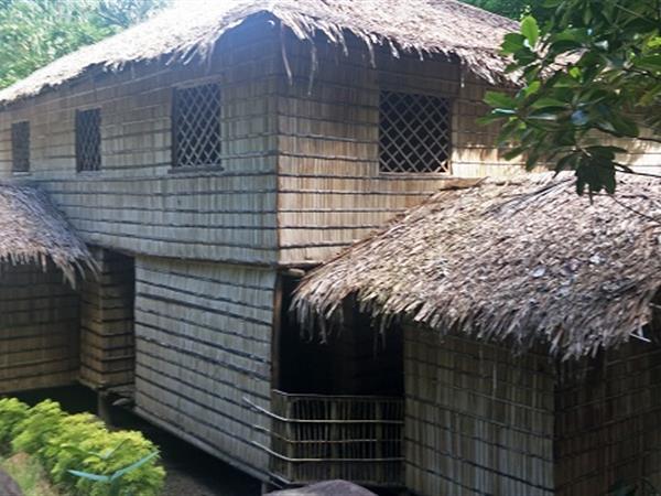 Palm Roots Guest Haus